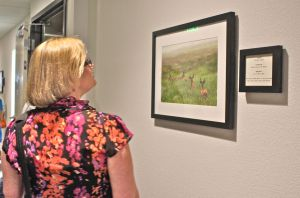 An attendee to the grand opening of the River Inn at Seaside observes a photo on the third floor. Each floor displays the work of a different local artist.