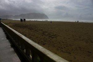 seaside_brood2