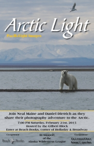 Artic Light Poster 12x18