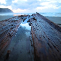 """""""Channel of Darkness"""" photograph mounted on bamboo."""