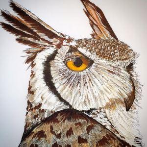 Britney owl