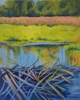 Coastal Wetland by Rommel