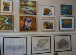 West wall of BEAVER TALES Pop-Up Gallery
